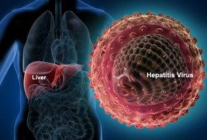 Viral Hepatitis 1