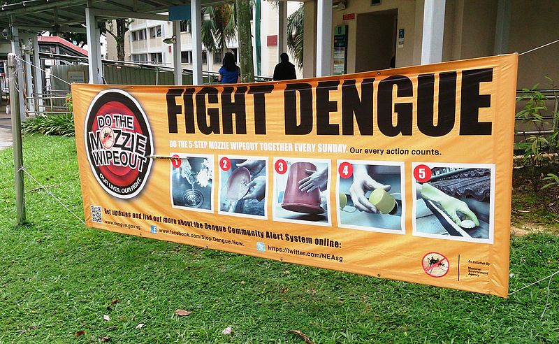 Dengue_fever_banner_(fight_dengue)